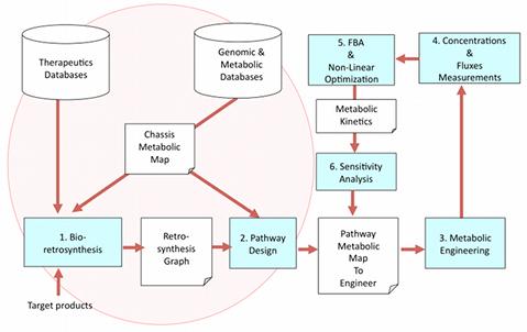 BioRetroSynth: background and previous developments