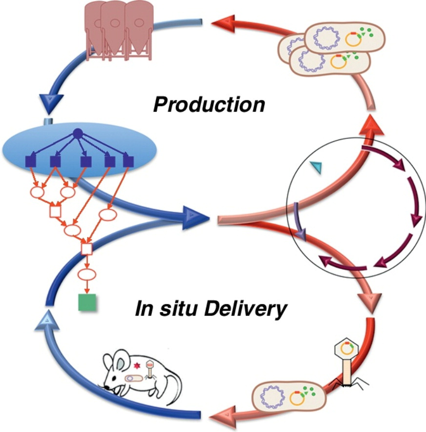 A retrosynthetic biology approach to therapeutics: from conception to delivery, Current Opinion in Biotechnology